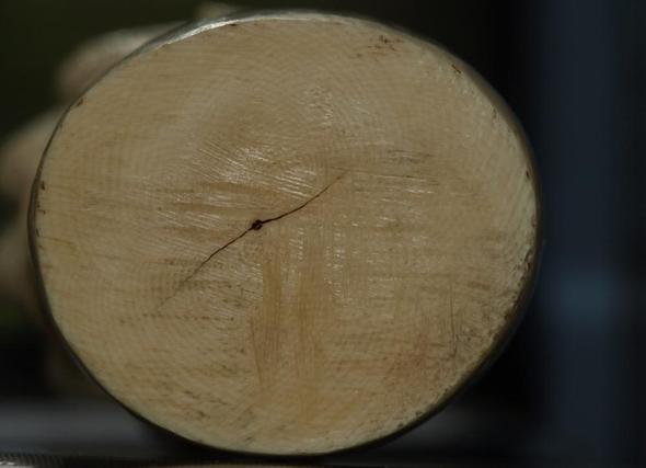 Fig2 - (Figur, Elfenbein)