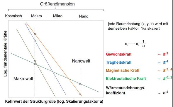 Graphik - (Technik, Physik)