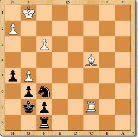 - (Sport, Schach)