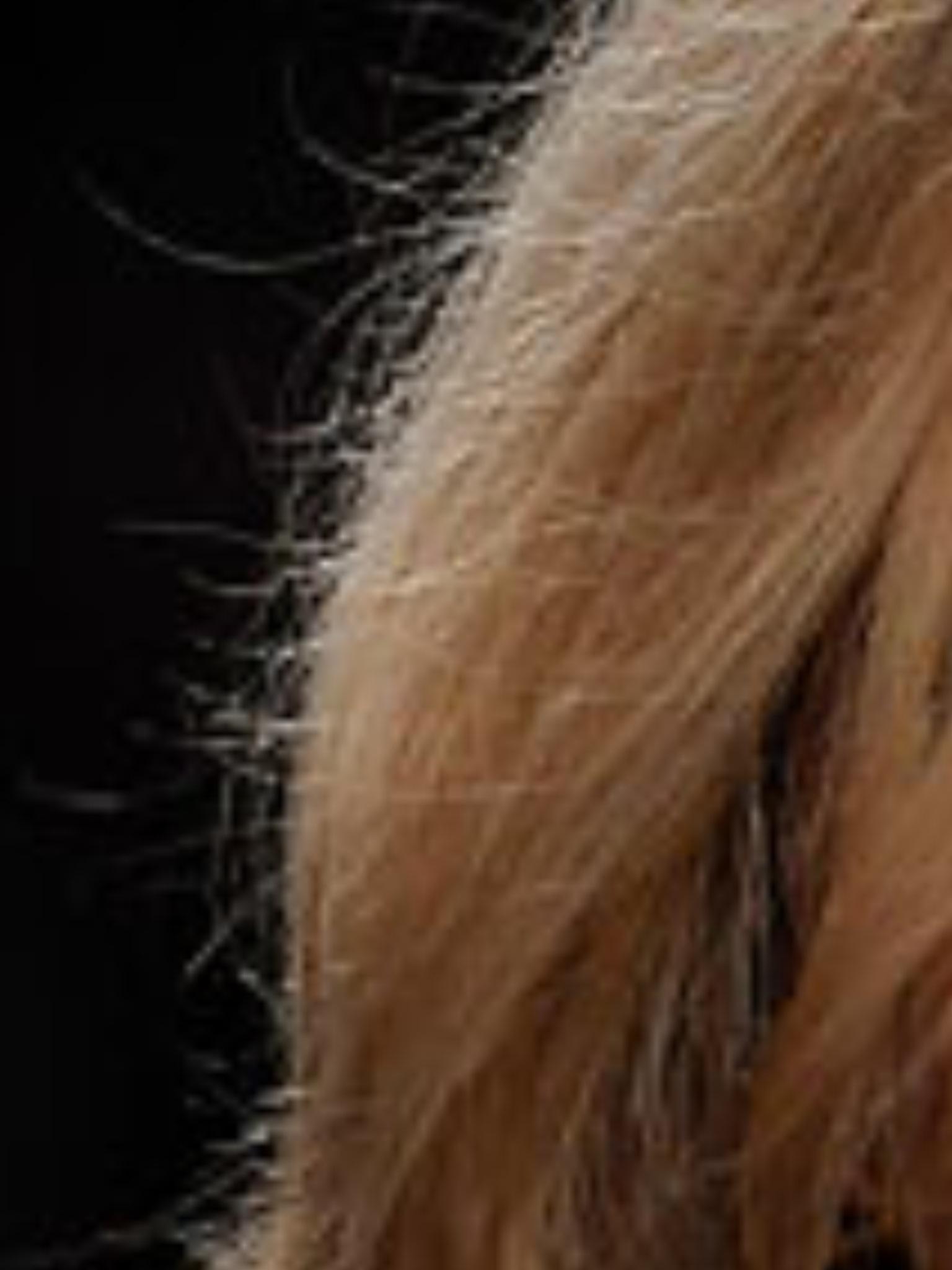 Pflege fur blondierte kaputte haare