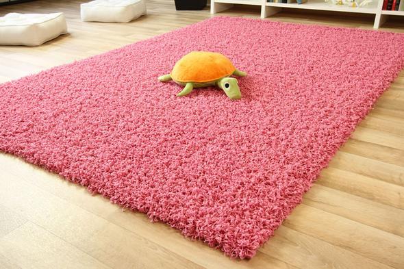 Teppich - (Katzen, Teppich)