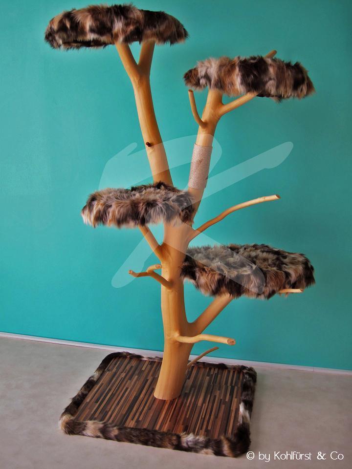 Katzenbaum bauen (Katzen)