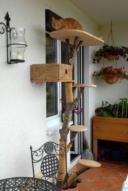 katzenbaum selber machen full size of kratzbaum naturholz. Black Bedroom Furniture Sets. Home Design Ideas