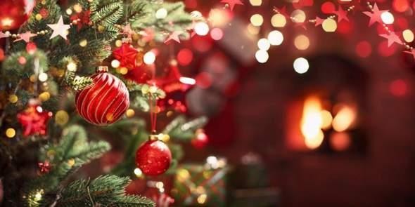 Kauft ihr dieses Jahr zu Weihnachten wieder einen Weihnachtsbaum oder eher nicht?