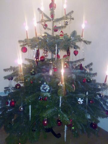 Kristbaum - (Weihnachten, Kristbaum)