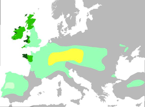 - (Deutsch, Geschichte, Österreich)