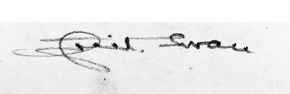 Das ist die Signatur... - (Kunst, Künstler, Maler)