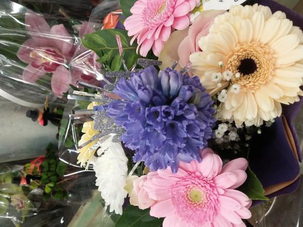 - (Pflanzen, Blumen, fachbezeichnung)