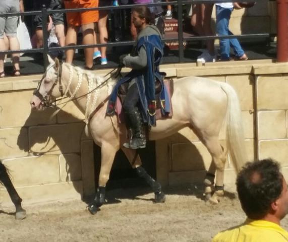 Pferd aus europapark - (Pferde, Europapark, Pferderassen)