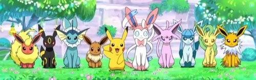 Pokemon - (Pokemon, erkennen)