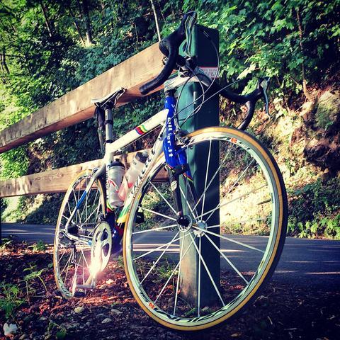 Wilier - (Fahrrad, Lampe, Rennrad)