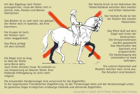 Bitte nicht so! - (Pferde, reiten, Dressur)