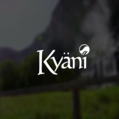 Kyani Logo  - (Internet, Geld, Geschäft)