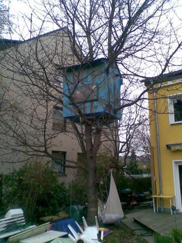 kirschbaum beschneiden aber wie und wann garten baum. Black Bedroom Furniture Sets. Home Design Ideas