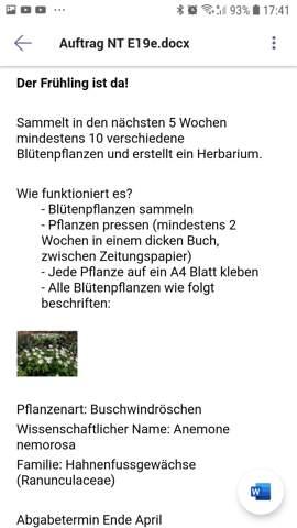Könnt ihr mir bei der Blütenpflanzensuche helfen?