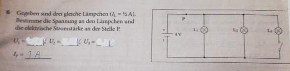 Könnte mir bitte jemand bei der Physikaufgabe helfen?