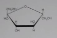 02 - (Chemie, Biologie, Formel)