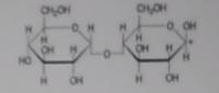 03 - (Chemie, Biologie, Formel)