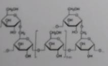 07 - (Chemie, Biologie, Formel)