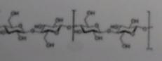 08 - (Chemie, Biologie, Formel)