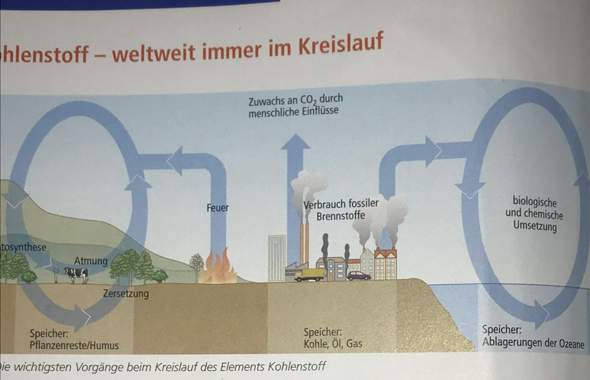 Kohlenstoffkreislauf Speicher Kohle Öl und Gas?