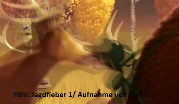 Film: Jagdfieber 1 Aufnahmequelle: Sat  1 Das Bild gehöhrt nicht mir! - (Computer, DVD, konvertieren)