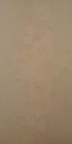 Bild 1 - (Flecken Wand, Schimmel Verdacht)