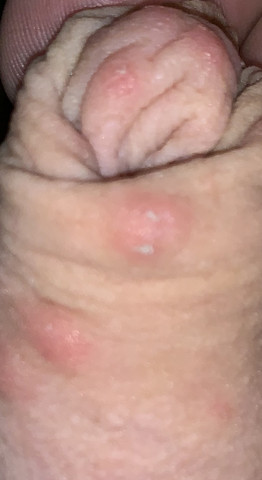 Lena paul nude