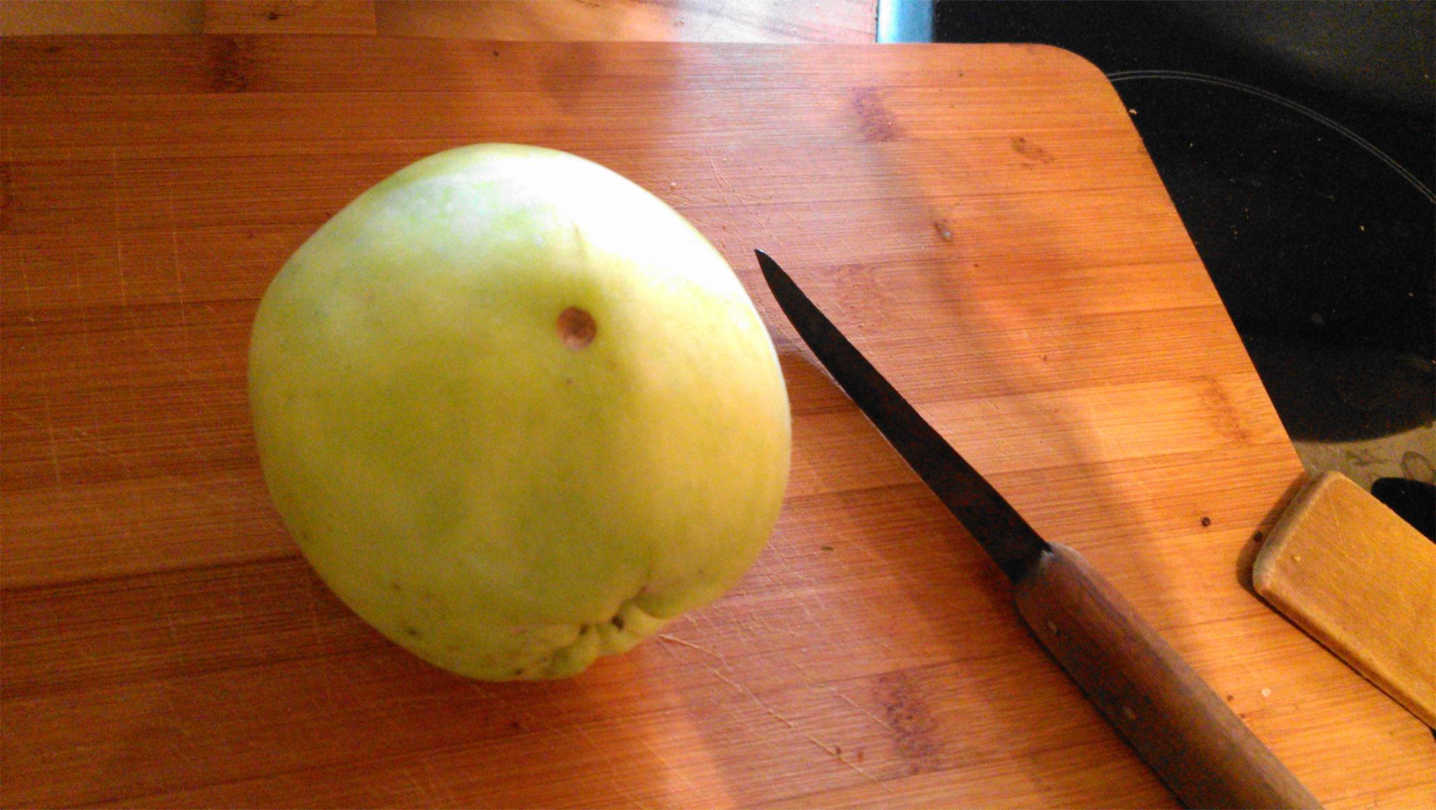 komische Stellen an Äpfeln ausm Garten? (Foto) (Obst, Aepfel)