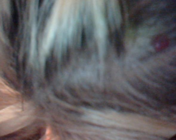 Hat das Haar von den Ölen überlastet