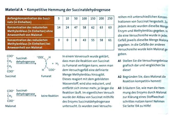 Kompetitive Hemmung der Succinatdehydrogenase?
