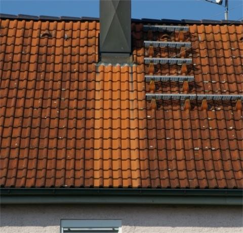 - (Dach, Kupfer, Moos)