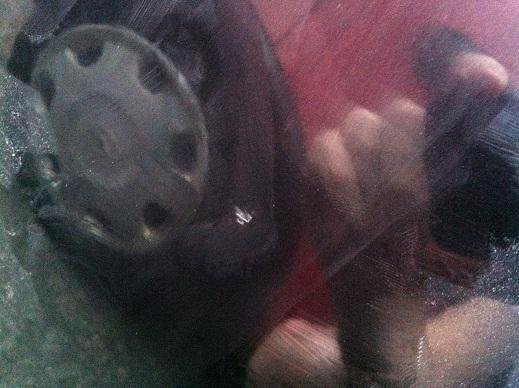 Lack Reparatur Kosten Nach Unfall Auto Lackieren