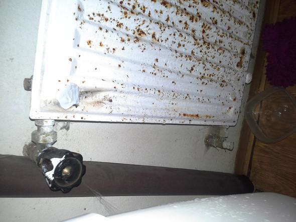 leck im hheizk rper wie stelle ich das wasser ab haus heizung bau. Black Bedroom Furniture Sets. Home Design Ideas