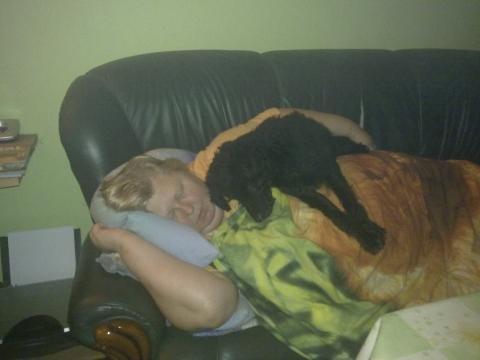Lege Ich Mich Auf Die Couch Legt Sich Mein Hund Als Decke Aus Mich