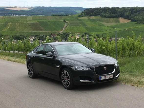 Lieber Mercedes oder Jaguar?