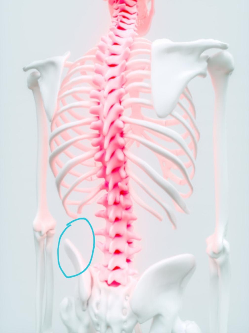 Links unten Rückenschmerzen? (Medizin, Schmerzen, Rücken)