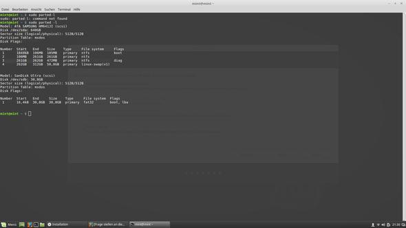 """Im Terminal """"sudo parted -l"""" eingegeben. Das kommt dabei raus... - (Computer, Fehler, Linux)"""