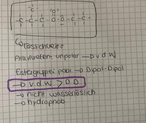 Löslichkeit Ester (Erklärung 😭)?