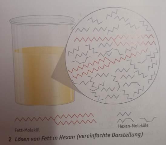 Löslichkeiten von Fett (Van der Waals Kräfte?)?