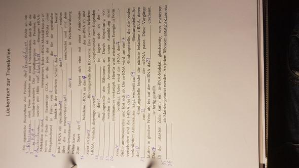 Lückentext - (Schule, Chemie, Biologie)