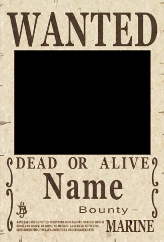 one piece wanted - (One Piece)
