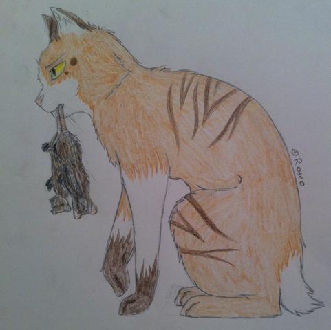 Malstil Verbessern Katzen Kunst Zeichnen Malen