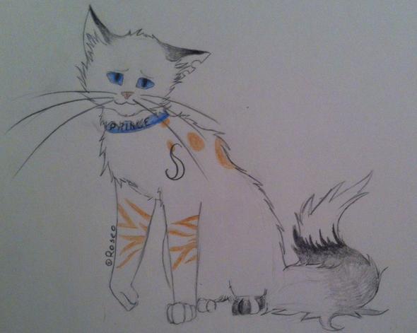 Malstil verbessern (Katzen) (Kunst, zeichnen, malen)