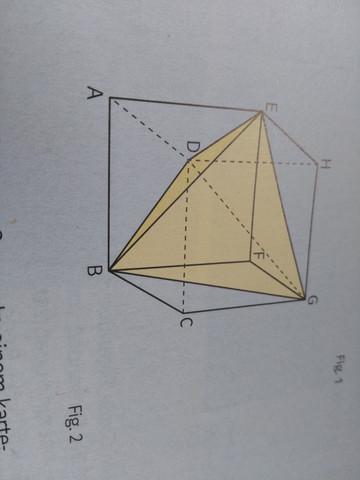 - (Schule, Mathe, vektoren)