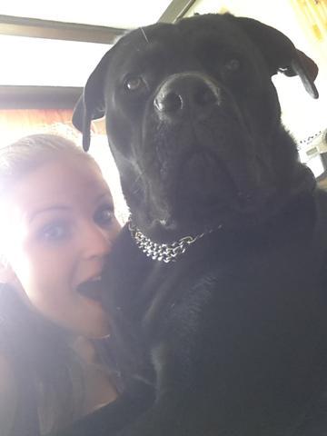 Kira und meine Große Schwester - (Hund, angreifen)