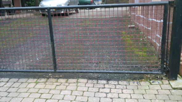 Mein Hund Wurde Durch Den Zaun Gebissen Fremder Hundehalter War