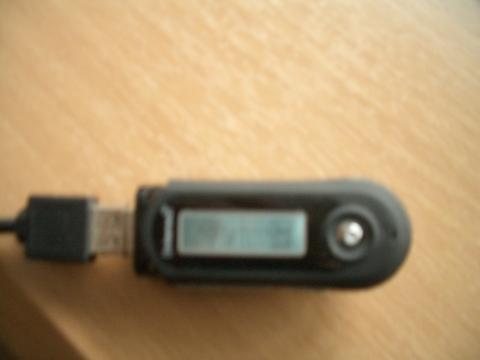 Der MP3 Player - (Musik, MP3-Player, formatieren)