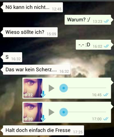 WhatsApp Screenshot - (Angst, Mobbing, Unschuld)