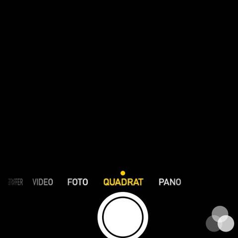 Kamera Bildschirm, erscheint schwarz - (Handy, iPhone, Apple)